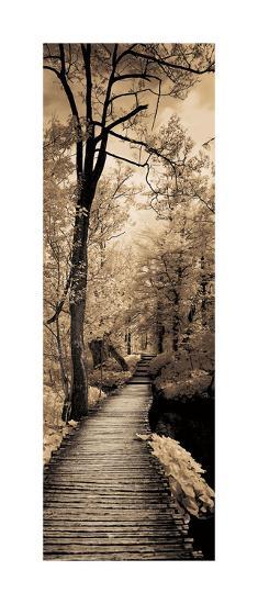 A Quiet Stroll I-Ily Szilagyi-Giclee Print