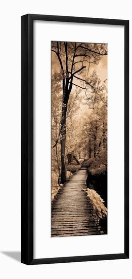 A Quiet Stroll I-Ily Szilagyi-Framed Photographic Print