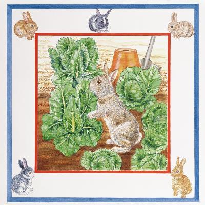 A Rabbit in the Cabbage Patch-Catherine Bradbury-Giclee Print