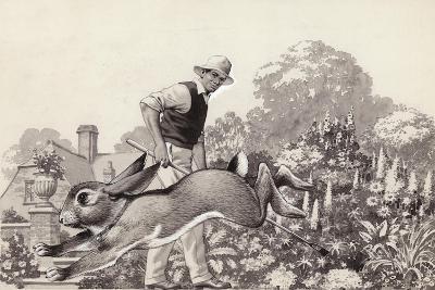 A Rabbit Runs around a Garden in a Cat Collar-Pat Nicolle-Giclee Print