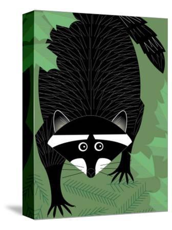 A Raccoon