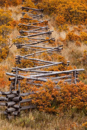 A Rail Fence Among Fall Foliage-Greg Winston-Photographic Print