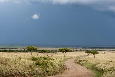 A Rainstorm Approaching in the Masai Mara Plains, Kenya-Sergio Pitamitz-Photographic Print