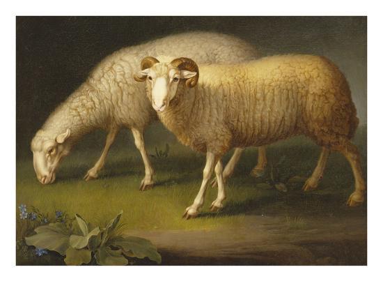 A Ram and a Sheep-Johan Wenzel Peter-Giclee Print