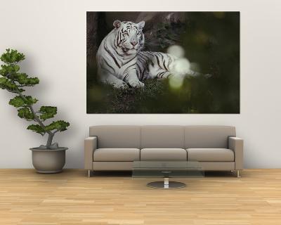 A Rare White Tiger at the Cincinnati Zoo-Michael Nichols-Giant Art Print