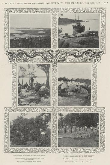 A Reply to Allegations of British Inhumanity to Boer Prisoners, the Bermuda Camps--Giclee Print