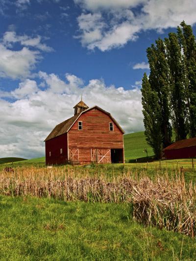 A Ride Through the Farm Country of Palouse, Washington State, USA-Joe Restuccia III-Photographic Print