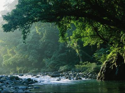 A River Flows Through a Northern Sierra Madre Natural Park Rainforest-Tim Laman-Photographic Print