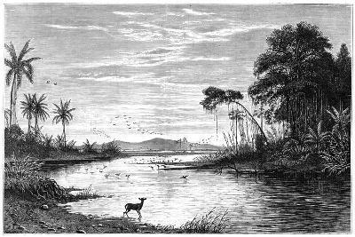 A River Scene in Venezuela, 1877--Giclee Print