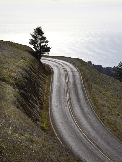 A Road in Mount Tamalpais State Park with a View of the Pacific Ocean in the Distance-Keith Barraclough-Photographic Print