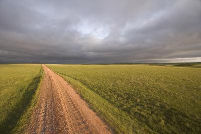 A Road Through Oglala National Grassland in Nebraska-Phil Schermeister-Photographic Print