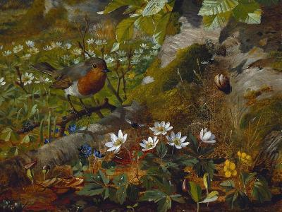A Robin at the Foot of a Tree-Olaf August Hermansen-Giclee Print