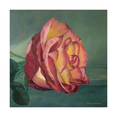 https://imgc.artprintimages.com/img/print/a-rose-is-a-rose-2_u-l-pymz6l0.jpg?artPerspective=n