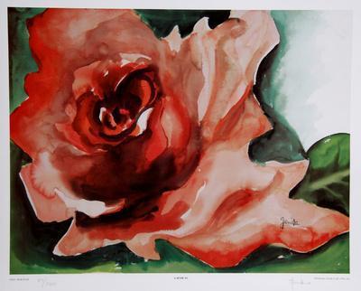 https://imgc.artprintimages.com/img/print/a-rose-is_u-l-f8k5t10.jpg?artPerspective=n