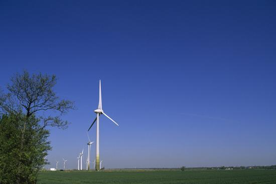 A Row of Windmills in a Field-Norbert Rosing-Photographic Print
