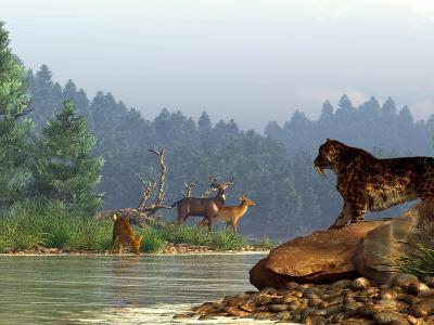 A Saber-toothed Cat Looks Across a River at a Family of Deer-Stocktrek Images-Photographic Print