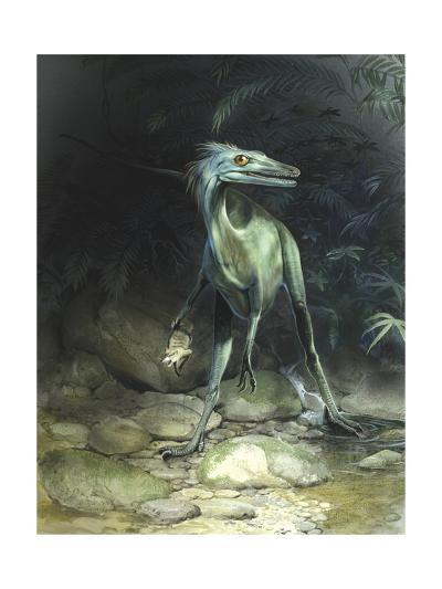 A Saurornithoides Troodontid Holding His Recently Caught Prey-Stocktrek Images-Art Print