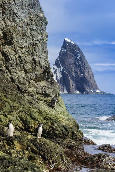 A Scenic View of Cape Valentine on Elephant Island, Antarctica-Ralph Lee Hopkins-Photographic Print