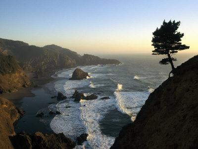 https://imgc.artprintimages.com/img/print/a-scenic-view-of-the-oregon-coast-at-samuel-h-boardman-state-park_u-l-p3r6kq0.jpg?p=0