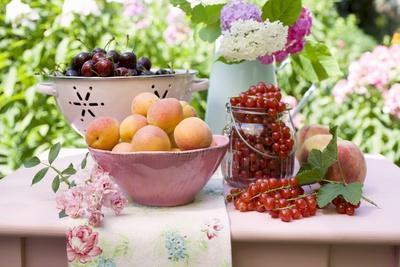 https://imgc.artprintimages.com/img/print/a-selection-of-fruit-on-a-table-in-a-garden_u-l-q1380y40.jpg?p=0