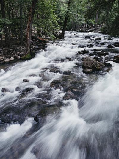 A Shallow Woodland Stream Tumbles over its Rocky Bed-Melissa Farlow-Photographic Print
