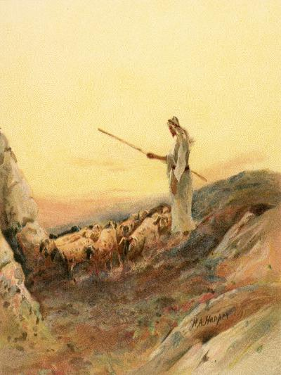 A Shepherd Counting His Sheep-Henry Andrew Harper-Giclee Print