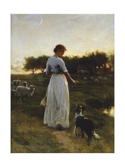 A Shepherdess with Her Dog and Flock in a Moonlit Meadow, 1888-George Faulkner Wetherbee-Giclee Print