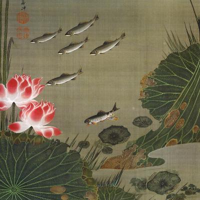 A Shoal of Trout and Lotus-Jakuchu Ito-Giclee Print