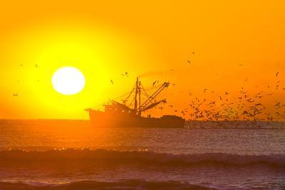 A Shrimp Boat with Hungry Birds at Sunrise-Brian Gordon Green-Photographic Print