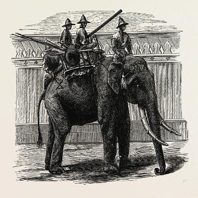 A Siamese War Elephant--Giclee Print