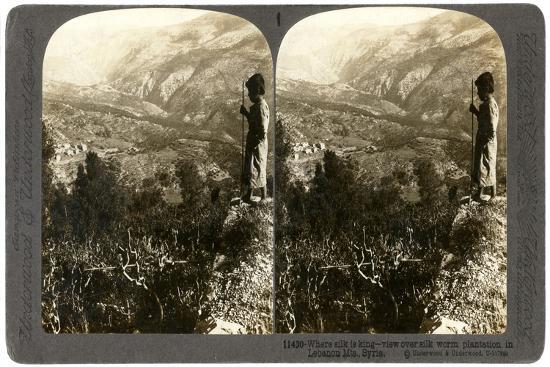 A Silkworm Plantation in the Lebanon Mountains, Syria, 1900s-Underwood & Underwood-Giclee Print