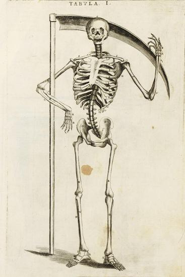 A Skeleton Holding a Scythe in the Style of a Grim Reaper--Giclee Print