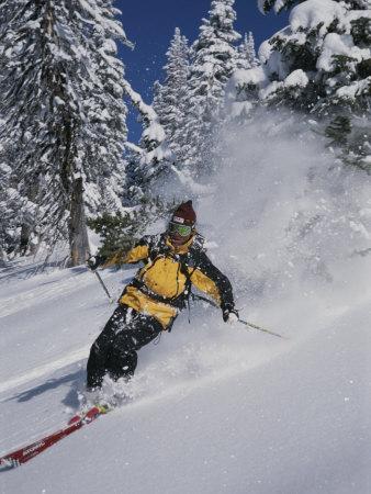 https://imgc.artprintimages.com/img/print/a-skier-cuts-through-some-untouched-powder-in-montana_u-l-p3qflu0.jpg?p=0