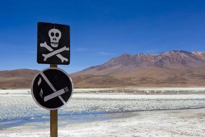 A Skull and Cross Bones Danger Sign on Edge of a Dried Up Lagoon-Mike Theiss-Photographic Print
