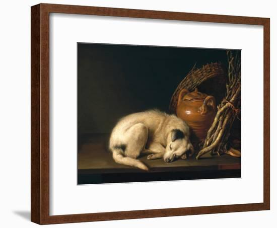 A Sleeping Dog with Terracotta Pot, 1650-Gerrit or Gerard Dou-Framed Giclee Print