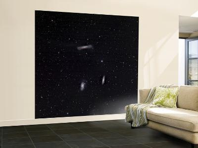 A Small Group of Galaxies known as the Leo Triplet--Wall Mural – Large