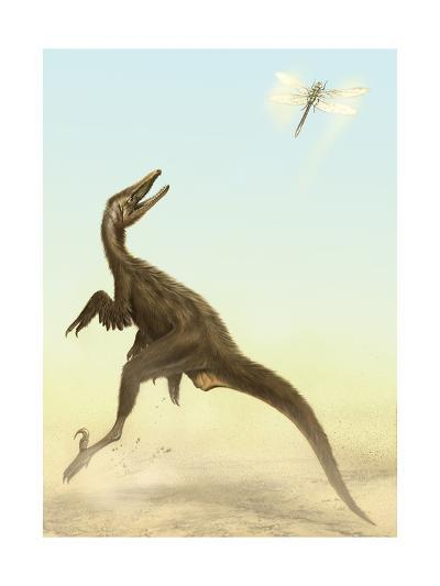 A Small Predatory Sinornithosaurus Jumps at a Dragonfly Flying Above-Stocktrek Images-Art Print