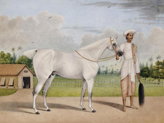A Small White Stallion Standing with a Groom Holding a Chauri-Shaikh Muhammad Amir Of Karraya-Giclee Print
