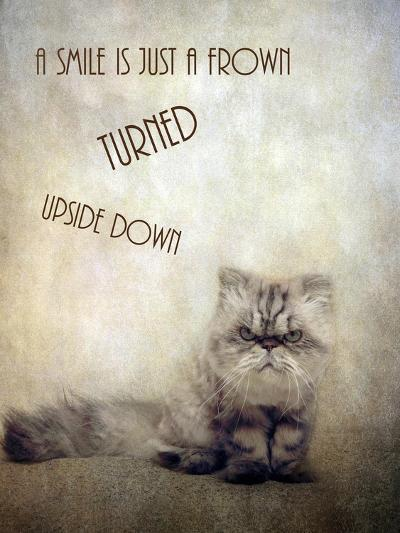 A Smile is Just a Frown-Jessica Jenney-Giclee Print