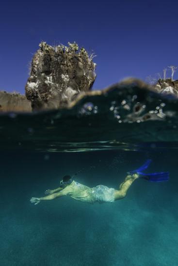 A Snorkeler Swimming Underwater-Jad Davenport-Photographic Print