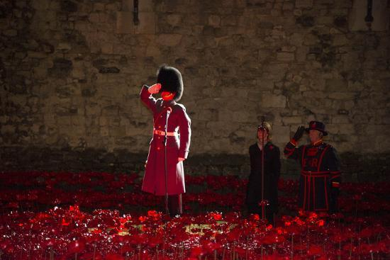 A soldier salutes in the midst of poppies at the Tower of London-Associated Newspapers-Photo