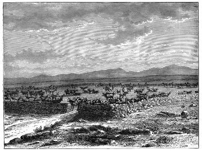 A South African Cattle Kraal, C1890--Giclee Print
