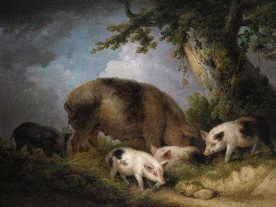A Sow and Her Four Piglets in a Wooded Landscape-Henry Thomas Alken-Giclee Print