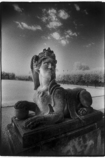 A Sphinx at Gross-Sedlitz, Heidenau-Simon Marsden-Photographic Print