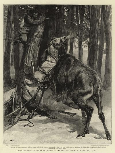 A Squatter's Adventure with a Moose in New Hampshire, USA-John Charlton-Giclee Print