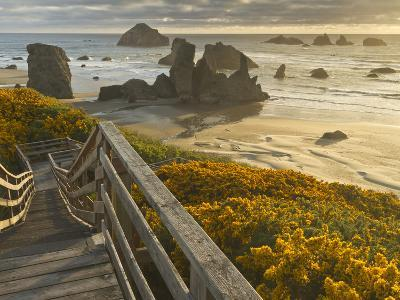 A Stairway Leads to the Beach in Bandon, Oregon, USA-William Sutton-Photographic Print