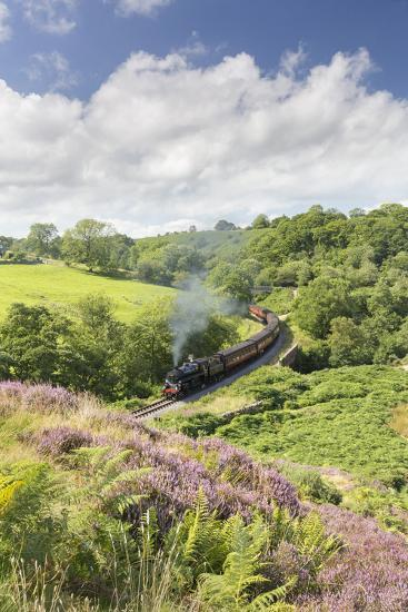 A Steam Locomotive Pulling Carriages Through Darnholme on North Yorkshire Steam Heritage Railway-John Potter-Photographic Print
