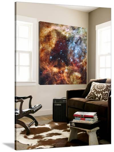 A Stellar Nursery known as R136 in the 30 Doradus Nebula--Loft Art