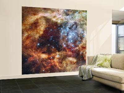 A Stellar Nursery known as R136 in the 30 Doradus Nebula--Wall Mural – Large