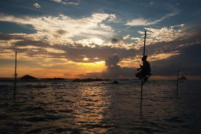 A Stilt Fisherman at Sunset-Alex Saberi-Photographic Print
